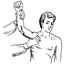 Зажмите артерию и приподнимите поврежденную часть туловища