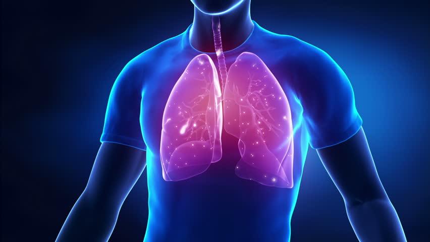 Дыхательная недостаточность возникает при сопутствующих сердечных заболеваниях, при аллергии или вдыхании химических реагентов